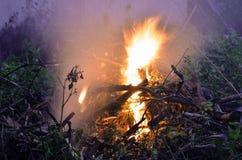 Flammes du feu à l'arrière-plan foncé photo stock