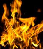 Flammes du feu brûlant d'isolement Image stock