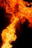 Flammes du feu, d'isolement sur le fond noir photographie stock libre de droits