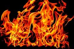 Flammes du feu d'isolement sur le fond noir images stock