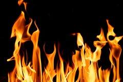 Flammes du feu de nature la nuit foncé photo stock