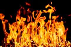 Flammes du feu de nature la nuit foncé Images stock
