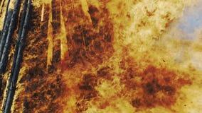 Flammes du feu de Pâques clips vidéos