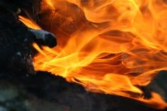 Flammes du feu sur le feu de camp photo stock