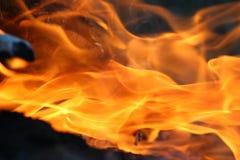 Flammes du feu sur le feu de camp photos stock