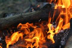 Flammes du feu sur le feu de camp photographie stock
