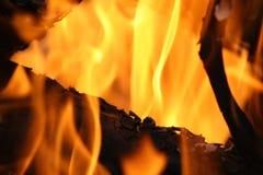 Flammes du feu sur le feu de camp photo libre de droits