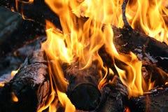 Flammes du feu sur le feu de camp image libre de droits