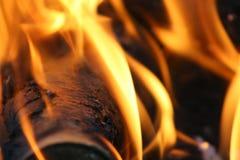 Flammes du feu sur le feu de camp image stock