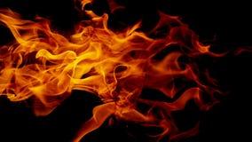 Flammes du feu sur le fond noir abstrait, images stock