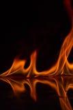 Flammes du feu sur un fond Photos stock