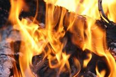 Flammes en gros plan du feu photo stock