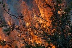 Flammes et balai Photos libres de droits