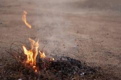Flammes et fumée de brûler les branches sèches image libre de droits