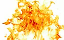 Flammes sur le blanc Photo libre de droits