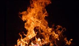 flammor Arkivfoto
