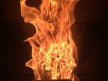 flammor Arkivbild
