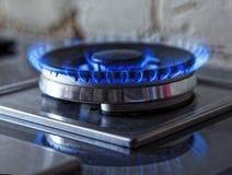Flammor av blåttgas Slut upp bränningbrandcirkeln från en kökgasugn Tonat foto Royaltyfria Foton