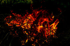Flammor av brand Fotografering för Bildbyråer