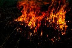 Flammor av brand Royaltyfri Fotografi