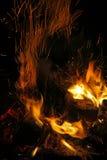 Flammor av en lägereld Arkivbild