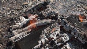 Flammor av hemtrevlig lägereld som bränns till glöd Ljus flammabränning på stenig jordning Ciners som förmultnar under signalljus stock video