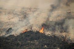 Flammor blossar upp på den Kalifornien bergssidan ovanför Carpinteria royaltyfri fotografi
