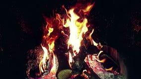 Flammor för verklig brand bränner rörelse med filialer av trä, spis i ultrarapid, på svart