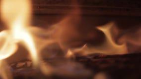 Flammor i en spis stock video