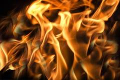 Flammor på en svart bakgrund Royaltyfri Fotografi