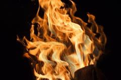 Flammor på en svart bakgrund Royaltyfria Bilder