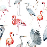Flamngo and heron pattern Stock Photo
