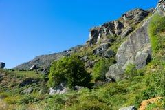 Flanc de coteau écossais Photo stock