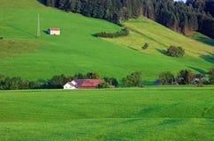 Flanc de coteau alpestre vert. Photos libres de droits