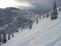 Flanc de coteau blanc photo libre de droits