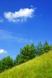 Flanc de coteau d'été. Images libres de droits