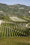 Flanc de coteau dans Piemonte photos stock
