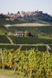 Flanc de coteau dans Piemonte images libres de droits