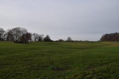 Flanc de coteau herbeux et ciel clair photos libres de droits