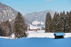 Flanc de montagne vivant dans le paysage profond d'hiver de neige Photos stock