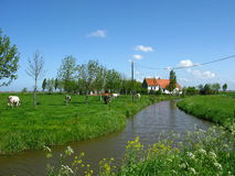 Flanders. In the West of Flanders, Belgium, quiet bucolic scenery.  Many remnants of World War II in this region Stock Image