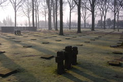 Flanders german cemetery Royalty Free Stock Photography