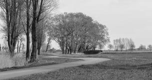 Flandryjskie pole wijące drogi obraz royalty free