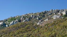 Flank van heuvel stock foto's