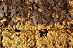 Flapjack. Black and white Flapjack - delicious bar with oatmeal, dried cranberry and dark chocolate Stock Photography