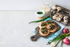 Flapjack with mushrooms and creamy garlic sauce. Flapjack with champignons and creamy bechamel sauce royalty free stock image