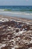 Flaque de pétrole sur la plage le juin 2010 Photo stock