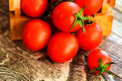 Flaque mûre rouge de tomates hors de boîte Vue rustique Photographie stock