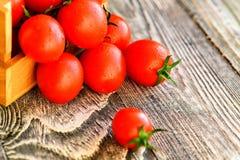 Flaque mûre rouge de tomates hors de boîte Vue rustique Photo stock