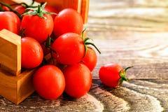 Flaque mûre rouge de tomates hors de boîte Vue rustique Images libres de droits